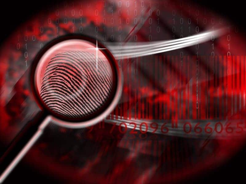 Image result for Private eye or Private Investigator?